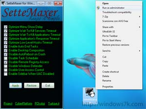 SatteMaxer para optimizar Windows 7